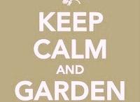 urban garden ideas / by Share Yoga