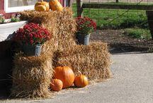 WeeFolkArt Harvest Time Curriculum