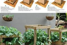 Gardening / Articles about gardening