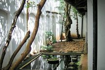 Zen courtyards