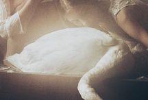 swan sisters, film