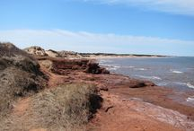 """Local Love - PEI / My favourite things to see and do while exploring """"The Gentle Island""""."""