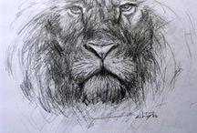 My Sketchz