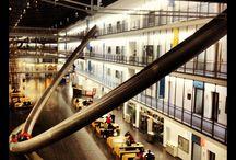 Universität in Deutschland