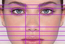 DEssin Proportions visage