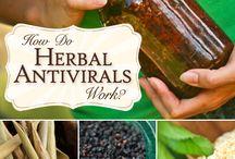 Herbal Medicine & tips