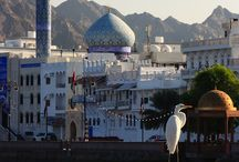 OMAN / by Northwestern College Study Abroad