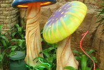 Alicja grzyby