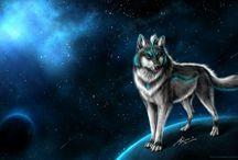 The Starry Wolves / Magic Wolves