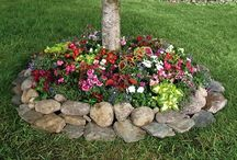 Landscaping ideas / by Trella H.