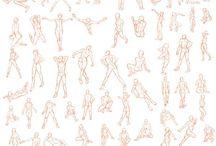 pose・anatomy
