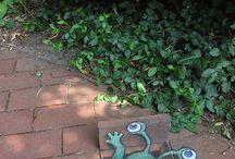 Cosas que adoro de jardinería / gardening