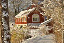Winter - Impressionen....
