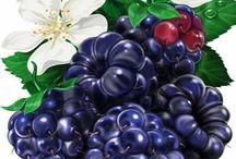 натурные фрукты овощи