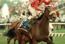 Horse Racing Club