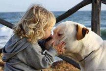 dogs, worlds best babysitters!