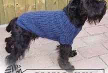 Dog knitwear