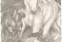 Koně omalovánky