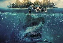 Toxic Shark - MORE MOVIE VISIT: https://wafijaya.com/category/movie/