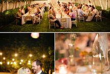 Tim and Loris reception / by Kimberli Hyzdu