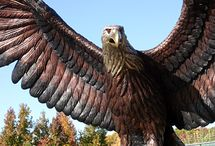 Bronze Eagles