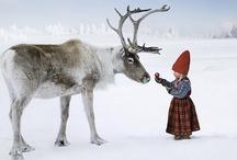 Sweden ~ Scandinavia / by Robert Ryggs