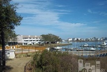 Discover Coastal Carolina / Things to do, places to see, Coastal Carolina is better than you imagine it could be!