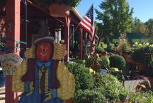 Harvest Fest 2015 / Mums, pumpkins, fall decor, and more...