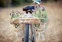 bicicletas especiales. specials bicycles