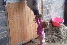 Niños y caballos