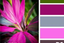 Color combo love... / Color combinations/palettes that work! / by flowerlily1