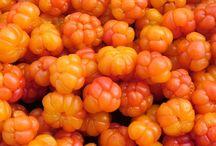 Berries (Hjortron) (Cloudberries)