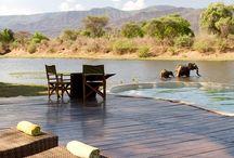 Wanderlust - Africa