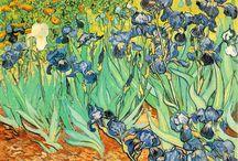iris (my favorite flower) / by Kathy Pfarr Dunklee