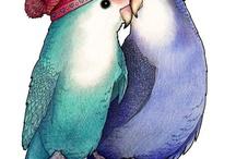 parakeets <3