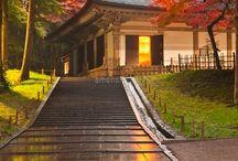 私の日本 / 私の勝手な選択です