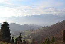 Stagioni /Seasons / Andando a scuola...