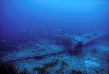 diving / plongée sous-marine