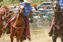 Rodeo star / Bucking
