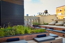 Gardens Roof / Terrace gardens, urban greenery, balconies bringing nature in the city