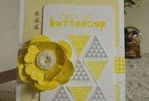 Stampin' Up! Occasions Salebration 2014