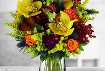 Colectia de toamna 2015 / O colectie inspirata din armonia naturii, din poezia toamnei ce contine rime din flori de toamna. Felul in care cei pe care ii iubesti vor trai si vor cunoaste toamna depinde de tine. Ofera-le cele mai frumoase buchete de toamna celor dragi. Acoperă-le inima cu petale de dragoste!  Suntem singura florarie online din Romania care iti livreaza flori online oriunde in Romania, in numai 2 ore de la plasarea comenzii.