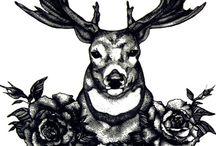 jeleň