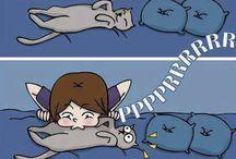Life Cat's