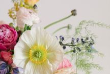 Floristry and Horticulture / Inspiration, books and other useful resources for floristry and horticulture students.