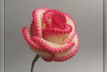 C Flores