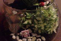 Decoration / Terrarium, decoration, candles, stone painting, bottle painting