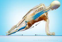 yoga&fit