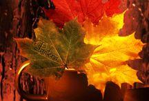 Autumn gifs