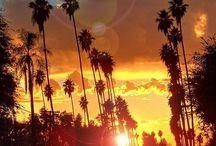 California - one day...